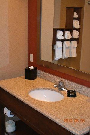 Hampton Inn & Suites St. Louis/South I-55: Bathroom