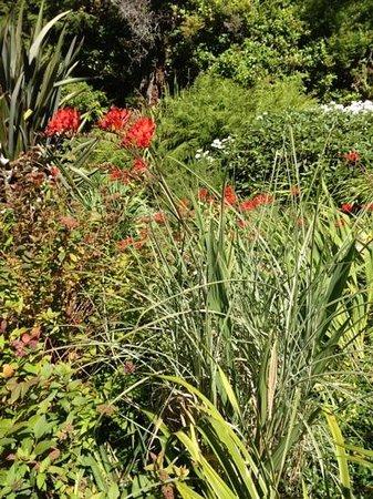 Ambrosia Gardens Bed & Breakfast: Ambrosia Gardens
