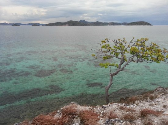 Malcapuya Island: In the cliff and a view of the island across