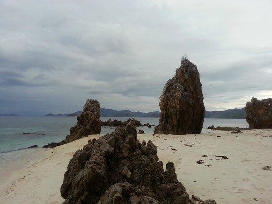 Malcapuya Island: Natural monument