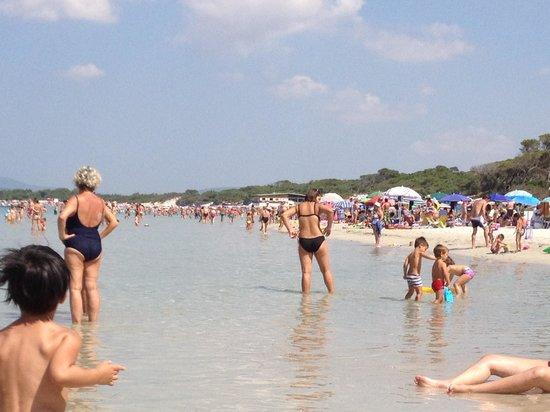 Camping La Mariposa: Stranden