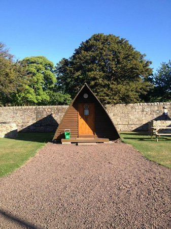 Mortonhall Caravan and Camping Park : Wigwam