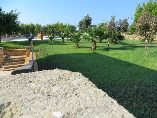 Azienda Agrituristica Matine: Giardino con piscina
