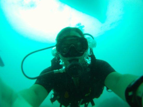 Sunshine Divers Resort: Diving 18 metres