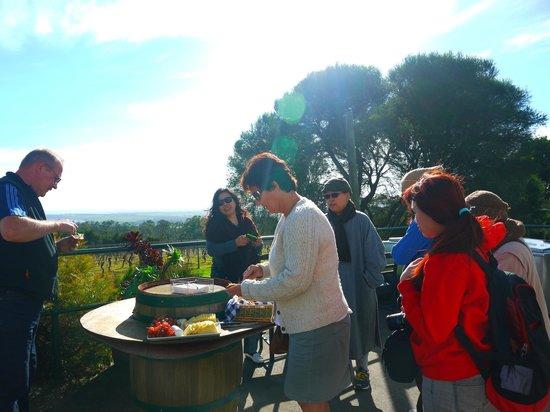 Phillip Island Nature Park: Having morning tea at a winery