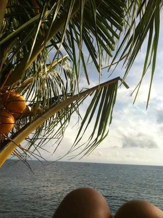 Puri Wirata Dive Resort and Spa Amed: relaxing view