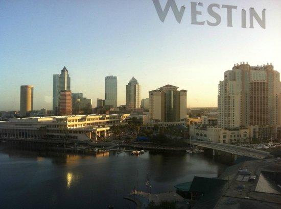 Westin Tampa Harbour Island: At sunrise.