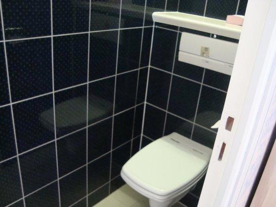 Royal Albion Hotel: toilette
