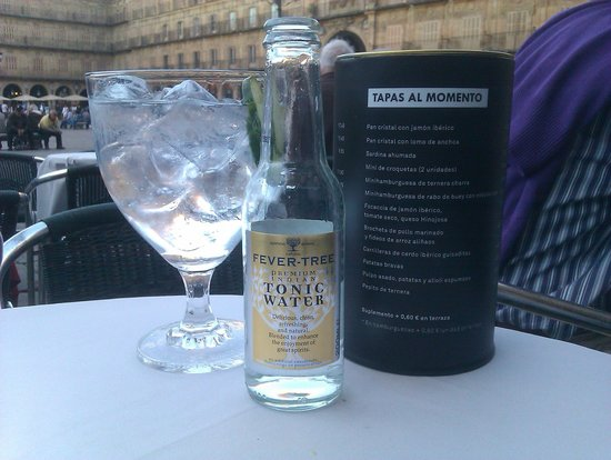 Plaza 23 restaurante: Hendrix Gin & Tonic