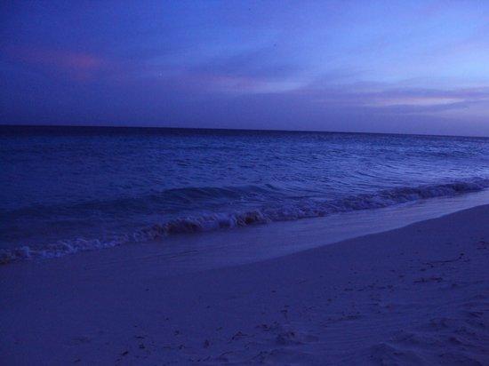 Tamarijn Aruba All Inclusive: another beautiful evening view