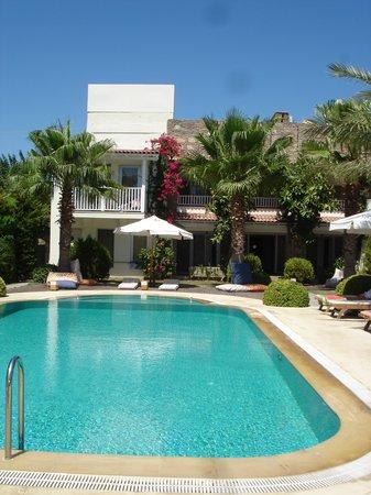 Sah Hotel: piscina