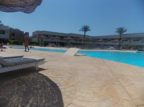 Viva Sharm Hotel: The swimming pool!