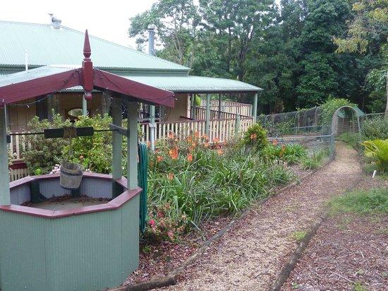 Avocado Grove B&B: giardino