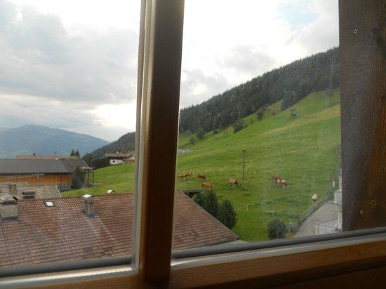 Gasthof Dolomitenhof: dalla finestra