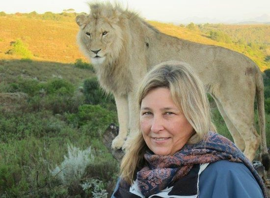 Botlierskop Private Game Reserve: close encounter