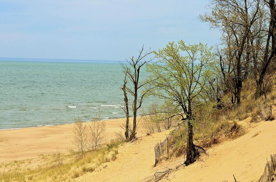 Indiana Dunes State Park: View from trail