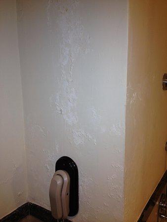 Le Meridien Ile Maurice: Bathroom wall