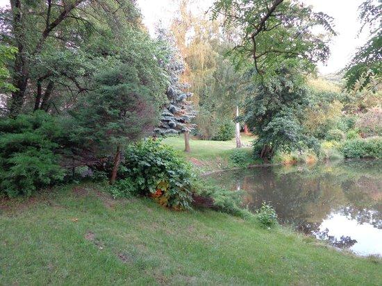 Schloss Stecklenberg: Der Teich im Schlosspark