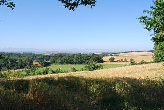 Le Domaine de Loustalviel: View; top of the hill just before reaching Loustalviel