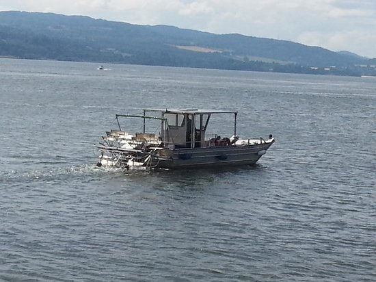 New Era Private Boat Trips: getlstd_property_photo