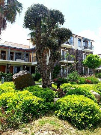 Cennet Park Hotel: otelin yeşil bahçesi