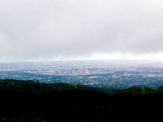 Mount Lofty Summit: Adelaide CBD from afar