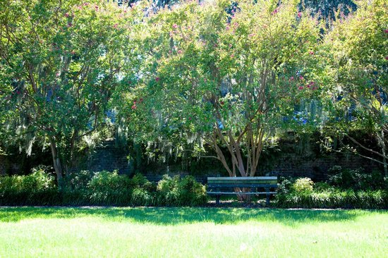 Quality Inn Savannah Historic District : Historic Downtown