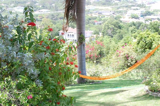 hammock - Photo de Emerald View Resort, Montego Bay - TripAdvisor