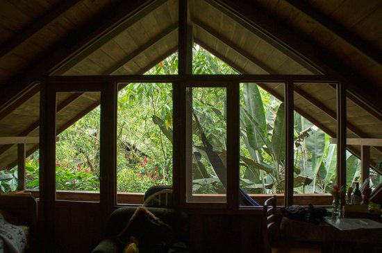 Casa Divina Lodge: Great view