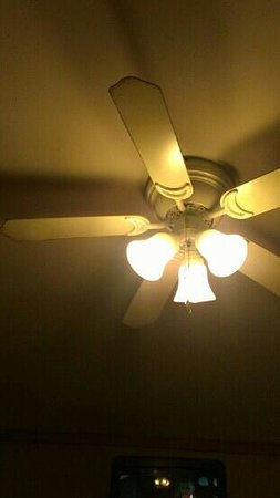 Monticello, IN: ceiling fan in our room, hasn't been cleaned for months.