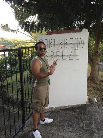 Caribbean Breeze Front Garden