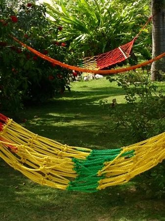 Emerald View Resort: the hammocks