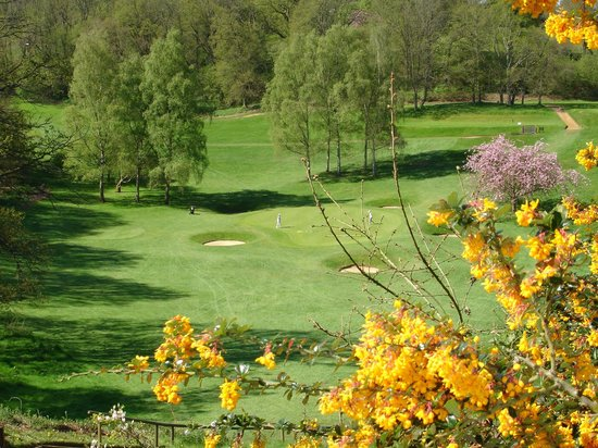 Bramley Golf Club: The 4th green from the tee