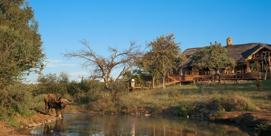 Royal Madikwe Luxury Safari Lodge: The Royal Madikwe