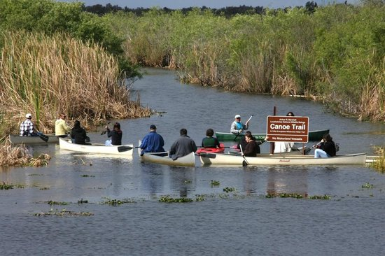 Boynton Beach, FL: Tom Rasmussen - Everglades Day Canoe Trip