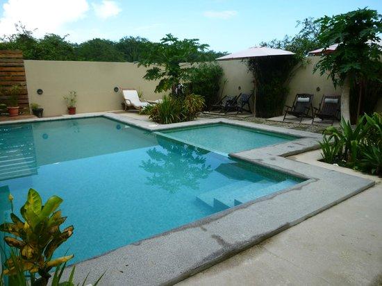 Nautilus Boutique Hotel : pool area