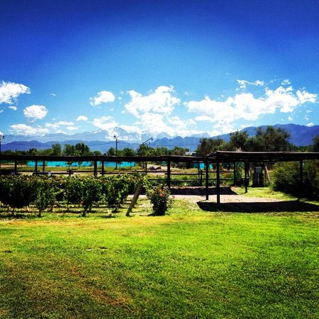 Villa Mansa Wine Hotel & Spa : View of the Andes from the patio of our hotel room
