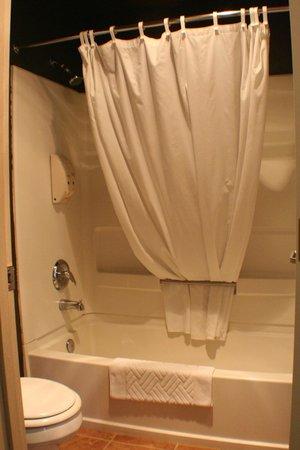 Cedars Ocean View Inn: Shower