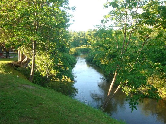 Hanmer's Riverside Resort & Livery : Betsie River view from Cabin #3