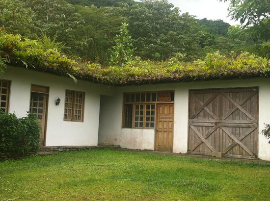 Rancho Margot: Driving up to the main lodge - check out the roof!