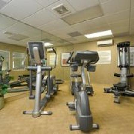 Comfort Inn & Suites Dover: Onsite fitness center