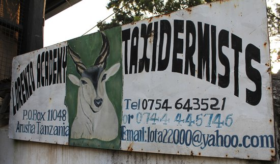 Old Boma Museum: Taxidermist sign
