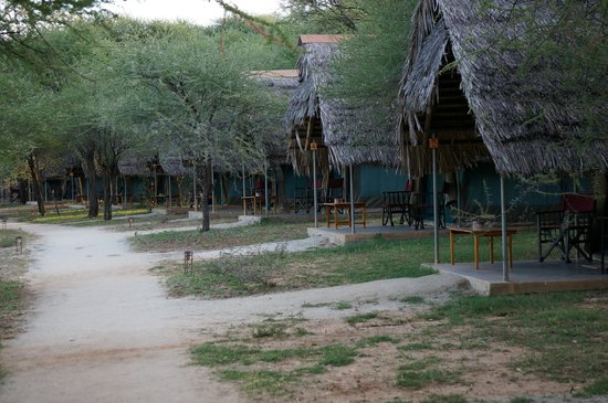 Tarangire Safari Lodge: One of the two sides of the main house.  Each tent is a room