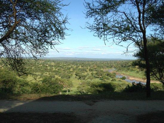 Tarangire Safari Lodge : View from the room