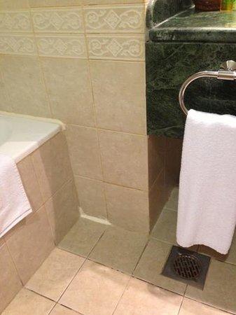 Habitat: Bathroom