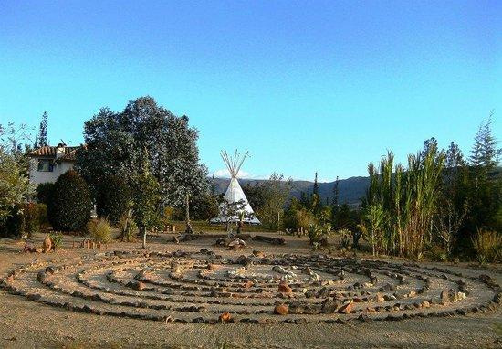 Fibas jardin de desierto villa de leyva colombia top for Jardin 64