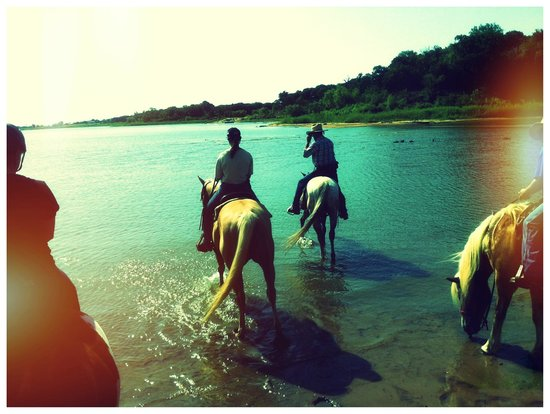 Widowmaker Trail Rides: most fun in the lake for a rest