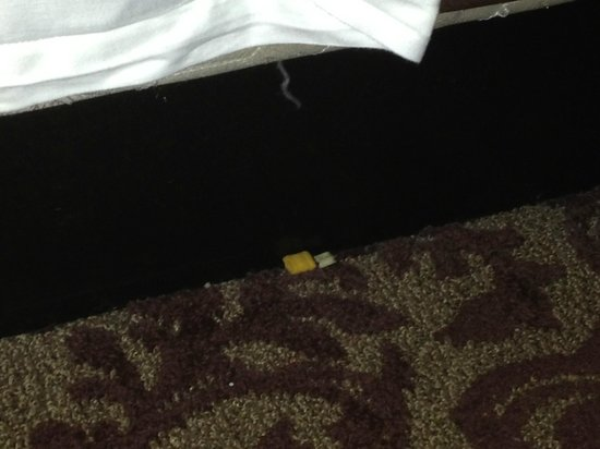 Sam's Town Hotel & Gambling Hall: Trash/food on the floor by the bed
