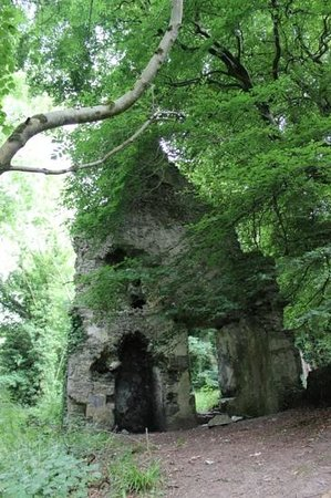 Ballygarry House Hotel & Spa: Ruins in the nearby woods