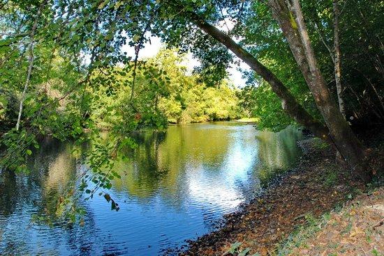 Chambres d'Hotes Claud de Gabari: La rivière dans notre bois privé
